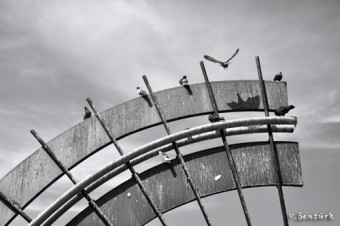 2.Kuşadası Fotomaratonu sergileme Vedat Şentürk